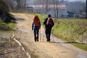 peregrinos caminando hacia compostela