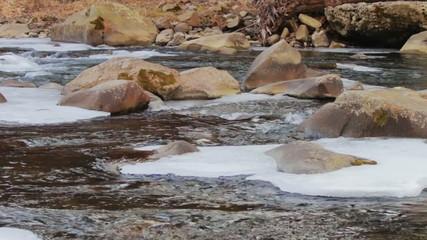 Mountain river runs rapidly