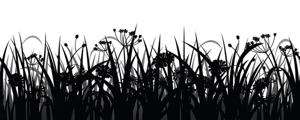 Seamless herbs and flowers silhouette, vector illustration