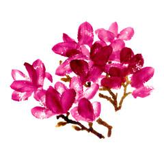 Red watercolor magnolia