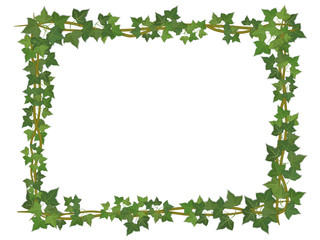 square decorative frame of ivy branches