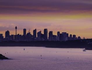 Sydney goes into the night