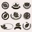 Tobacco leaf label and icons set. Vector - 79354814