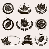 Tobacco leaf label and icons set. Vector