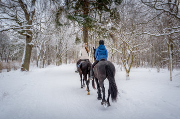 Horse riders at snowy weather