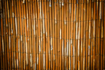 Reed fence garden