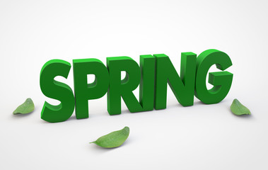 Spring text with leaves on white background