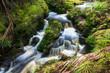 Small waterfall in jungle - 79355419