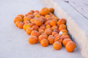Naranjas podridas.