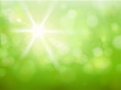 Sonnenlicht Frühling - Bokeh