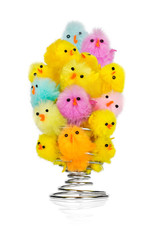 Small colorful chickens socialize in an egg cup