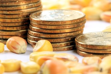 Commodity Market - Futures and Options Trading Concept