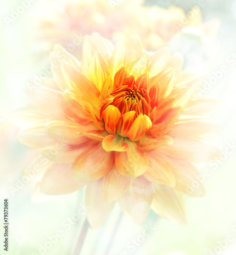 In de dag Dahlia Dahlia Watercolor