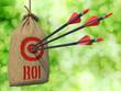 ROI - Arrows Hit in Red Target. - 79375639