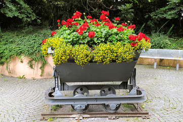 creative flower bed in the trolley