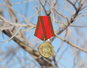 Памятная юбилейная медаль ветерана ВОВ
