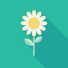 Spring background template. White flower cartoon drawing. Icon