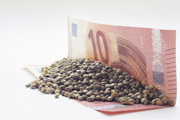 Ten euro banknote with a hemp seeds