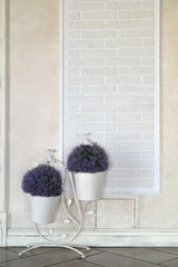 The decorative flowerpot with bouquets of a lavender costs on a