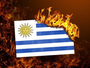 Flag burning - Uruguay