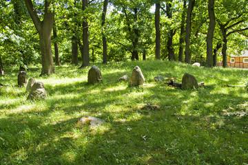 Perslund iron age graves