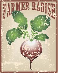 Farmer radish