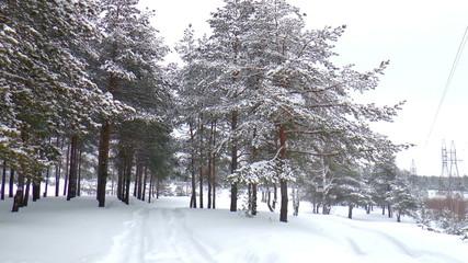The video shows winter landscape