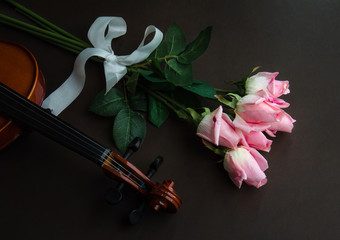 Pink roses and a violin