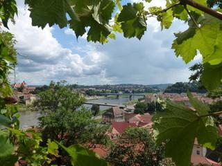 Meißen vom Burgberg aus gesehen