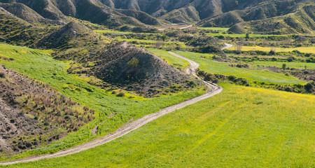 Green field Landscape, Cyprus