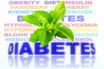 stevia herbs with diabetes related word