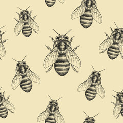 Bees texture. Seamless pattern