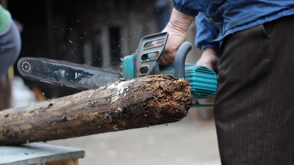 Cutting a rotten log with electrical chainsaw.