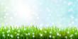 grüne Wiese mit Bokeh Hintergrund