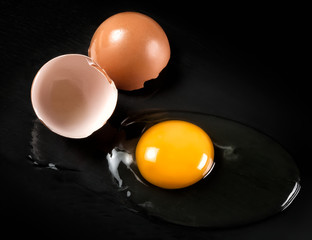 Raw Egg with Shell on Black Shale