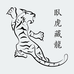 "Vector tiger. White background. The inscription ""Tiger"" in Chine"