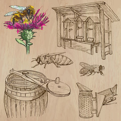 bees, beekeeping and honey - hand drawn vector pack 6