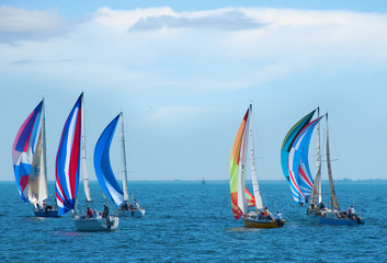 Sailboat race with colorful sails