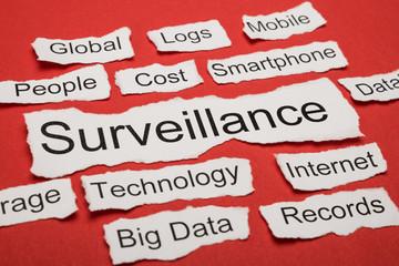 Word Surveillance On Piece Of Torn Paper