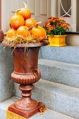 Large urn filled with pumpkins as a seasonal display