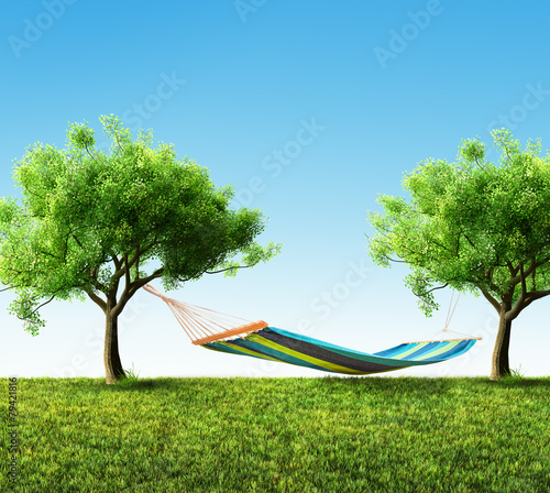 Relaxing on hammock in backyard - 79421816