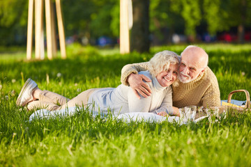 Glückliches Seniorenpaar macht Picknick