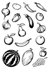 Variety sketches of fruits and vegetables