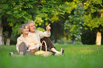 Senior couple on nature