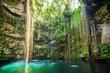 Ik-Kil Cenote near Chichen Itza, Mexico - 79434212