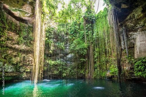 Fotobehang Meer Ik-Kil Cenote near Chichen Itza, Mexico