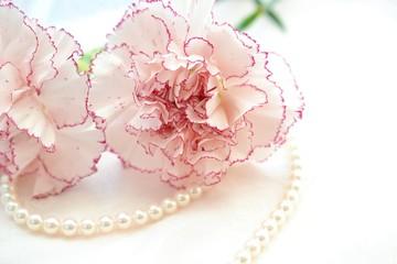 真珠とカーネーション