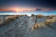 sand path to North sea beach at sunset - 79436400