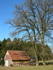 Alter Stall in der Senne bei Lipperreihe am Teutoburger Wald