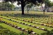 Cemetery of World War 2 casualties, Kanchanaburi, Thailand - 79450439